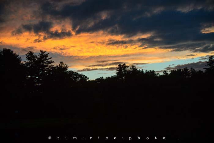 Yr4•295-365•Sky