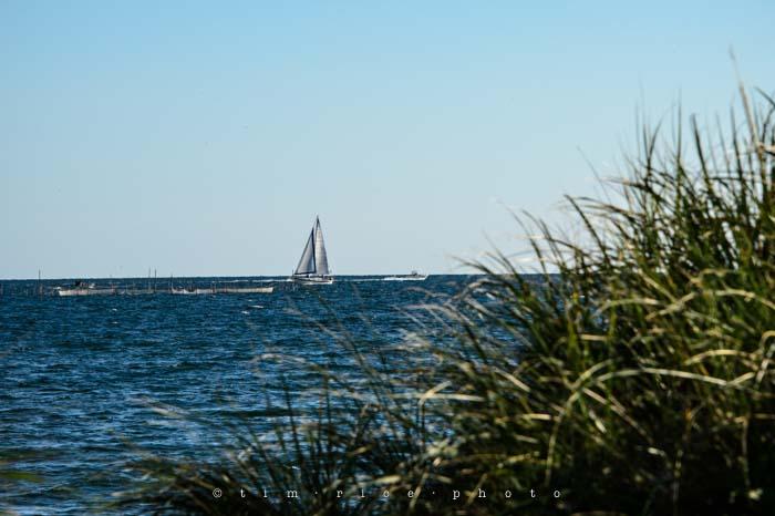 Yr4•314/365 Sailing Scene August 11, 2013