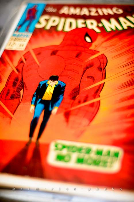 Yr4•347/365 Spider-man No More September 13, 2013