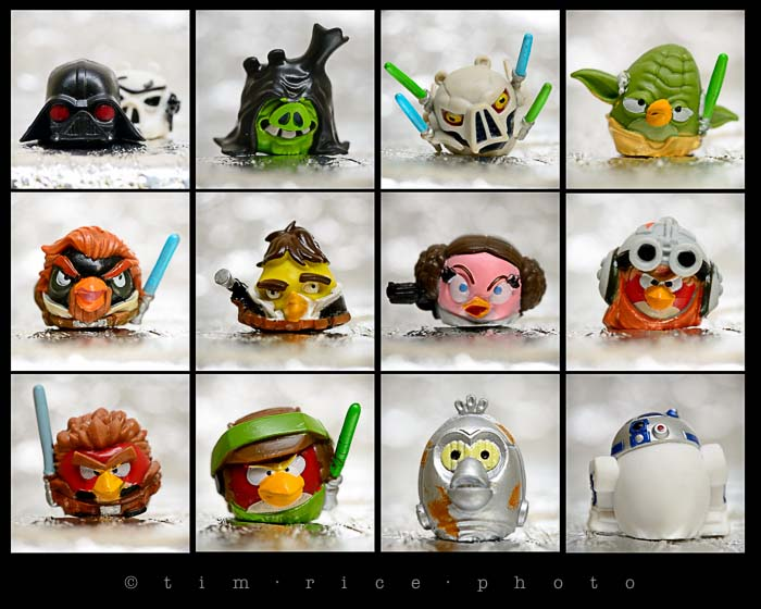Yr5•081/365•1543 Rebel Birds vs Imperial Piggies December 21, 2013