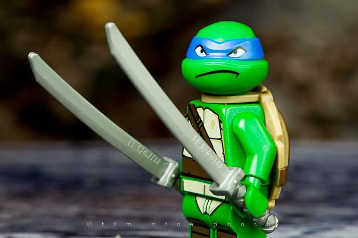 Yr5•092-365•1551•Raphael