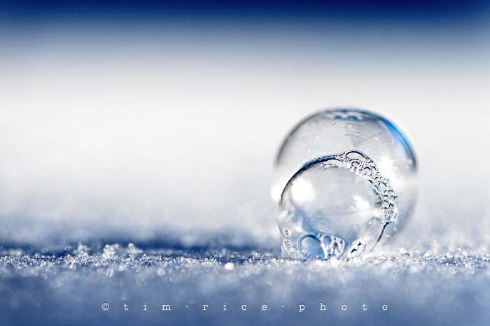 Yr5•096-365•1556•Frozen Bubbles