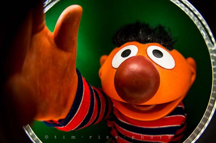 Yr5•114-365•1573•Looking at Ernie