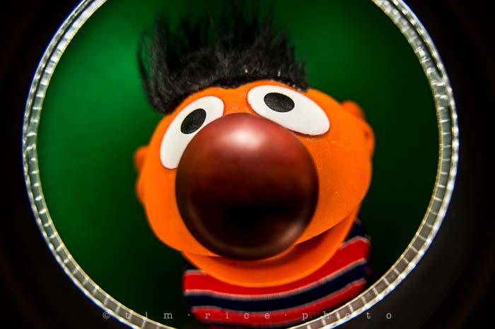 Yr5•115-365•1573•Looking at Ernie