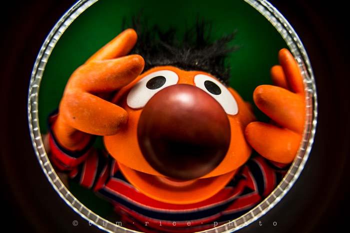 Yr5•117-365•1573•Looking at Ernie