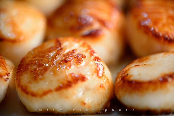 Yr5•125-365•1585•Stir Fried Noodles w- Seared Scallops