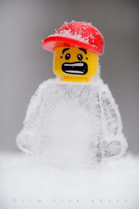 Yr5•129-365•1589•FrozenBoy
