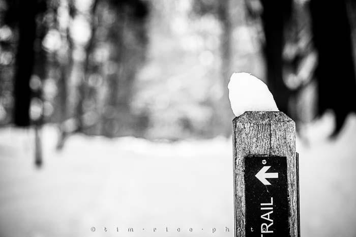 Yr5•137-365•1593•A Winter Falls