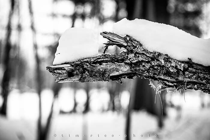 Yr5•138-365•1593•A Winter Falls