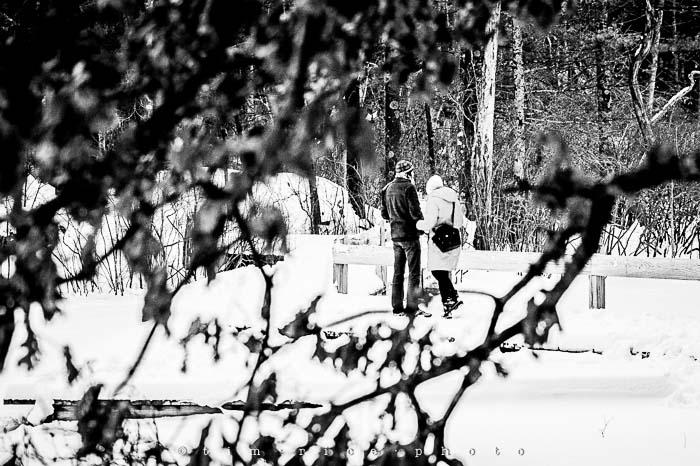 Yr5•145-365•1593•A Winter Falls