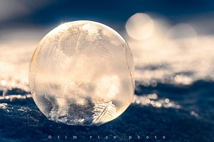 Yr5•151-365•1612•Frozen Soapscape