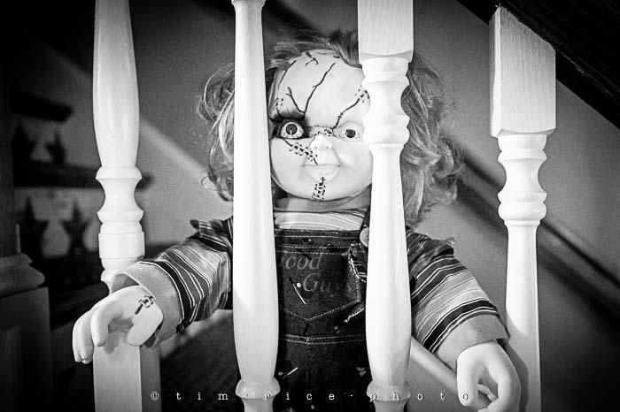 Yr5•202-365•1661•Chucky Time