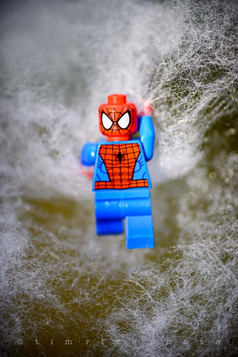 Yr5•213-365•1674•The Amazing Spider-Man