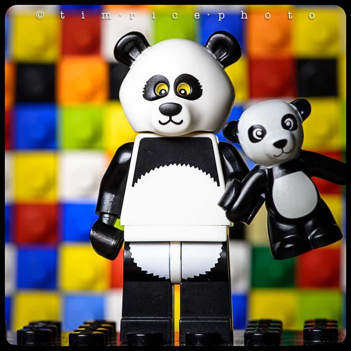 Yr5•246-365•1707•The Panda Guy
