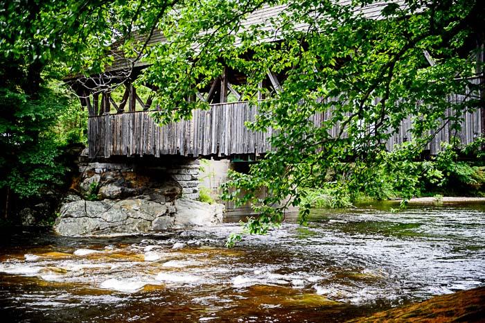 Yr5•273-365•1729•Artist's Bridge