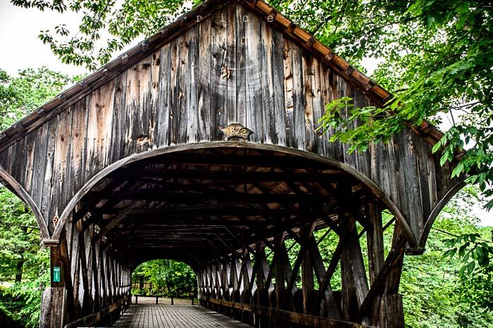 Yr5•274-365•1729•Artist's Bridge