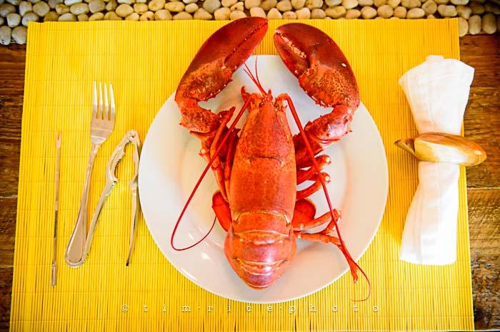 Yr5•279-365•1725•Summer Dinner