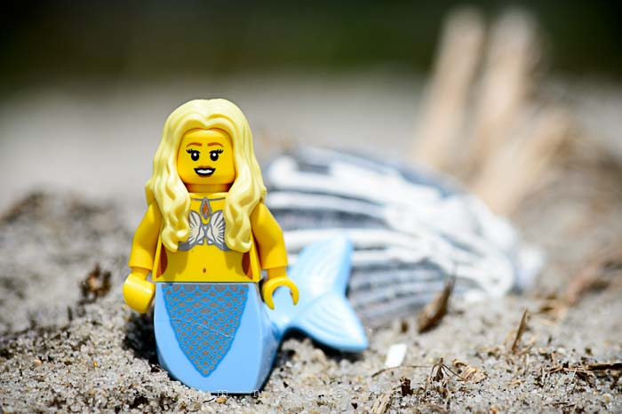 Yr5•295-365•1701•Sand Legoboy