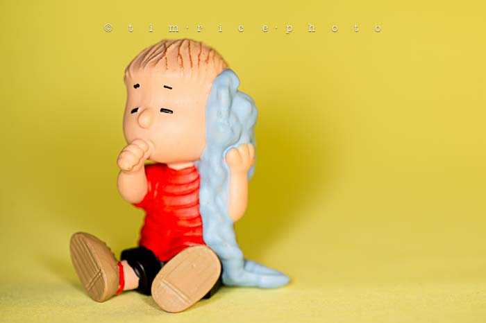 Yr6•002-365•1827•The Peanuts