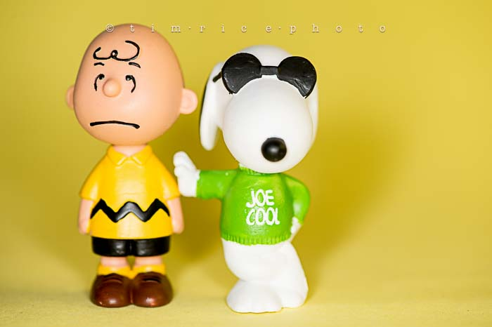 Yr6•005-365•1827•The Peanuts