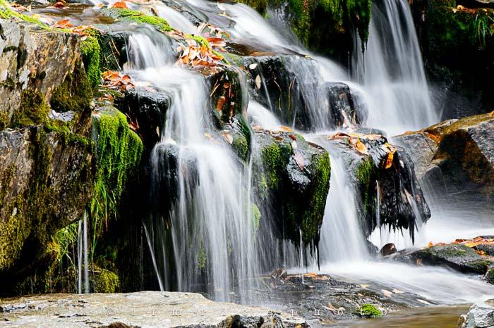 Yr6•006-365•1830•Jackson Falls in the Rain