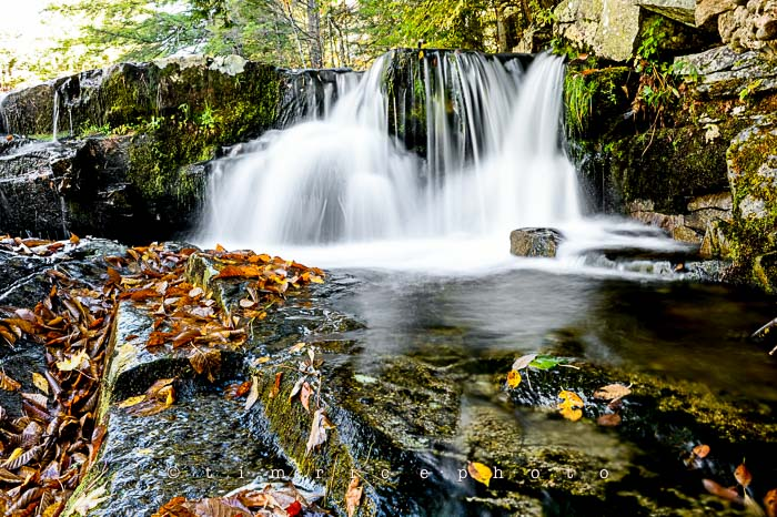 Yr6•006/365•1831 Autumn Falls October 6, 2014