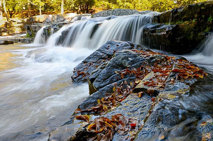 Yr6•006-365•1831•Autmn Falls
