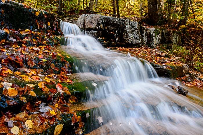 Yr6•008-365•1831•Autmn Falls-2