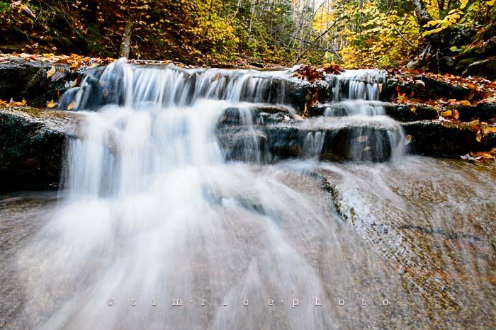 Yr6•010-365•1831•Autmn Falls