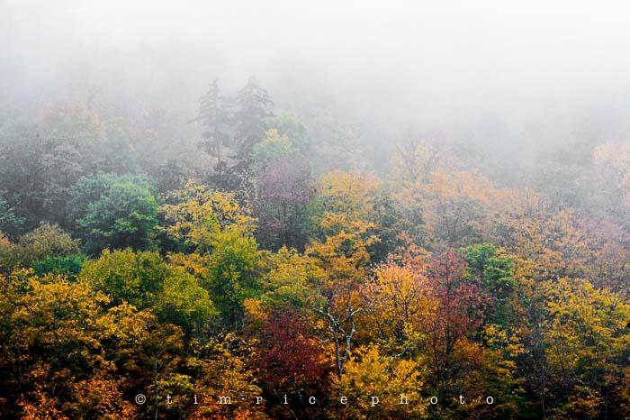 Yr6•011-365•1830•Jackson Falls in the Rain
