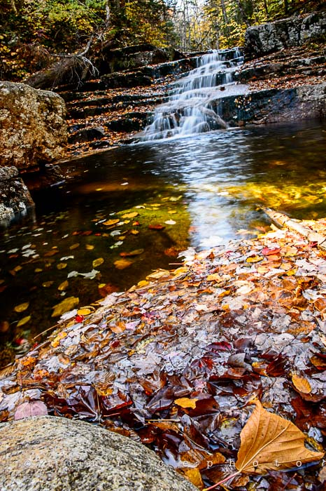 Yr6•013-365•1831•Autmn Falls