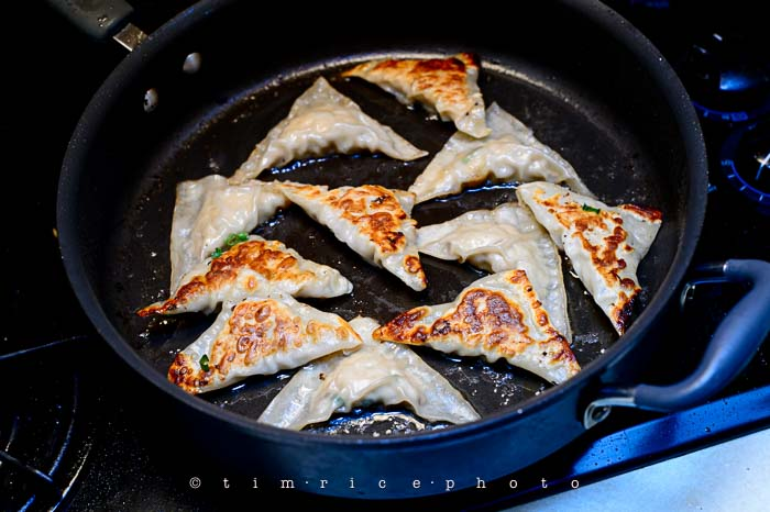 Yr6•050-365•1870•Potstickers