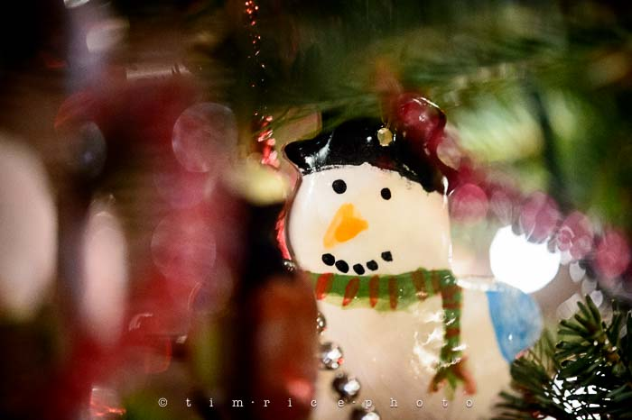 Yr6•075/365•1901 Snowman Hand Painted December 14, 2014