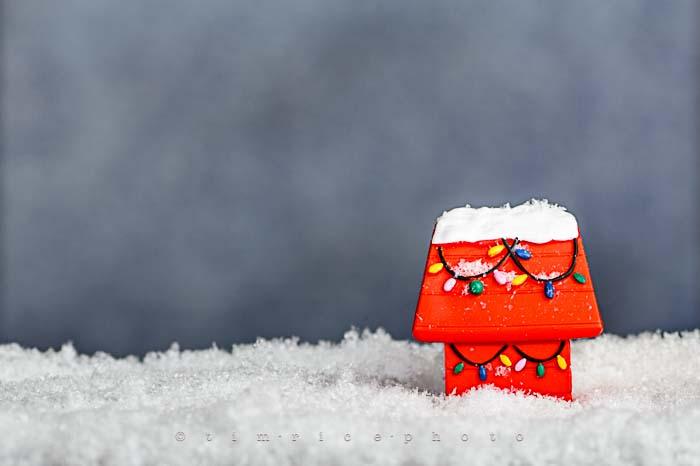 Yr6•078-365•1904•A Charlie Brown Christmas