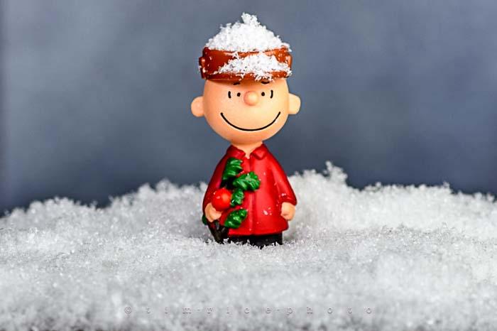 Yr6•079-365•1904•A Charlie Brown Christmas
