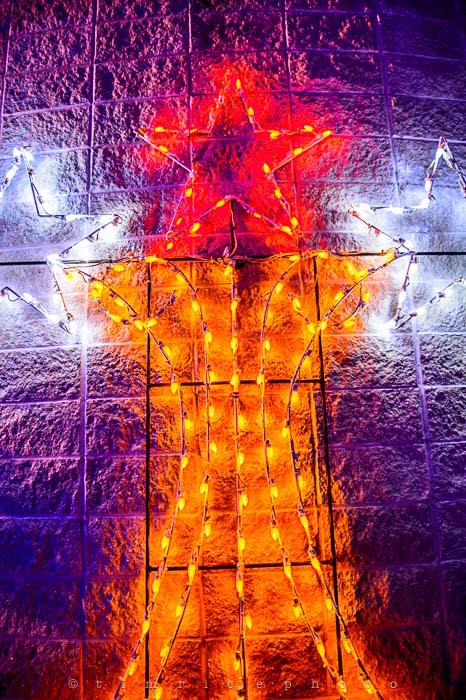 Yr6•085-365•1908•La Salettes Christmas Tree