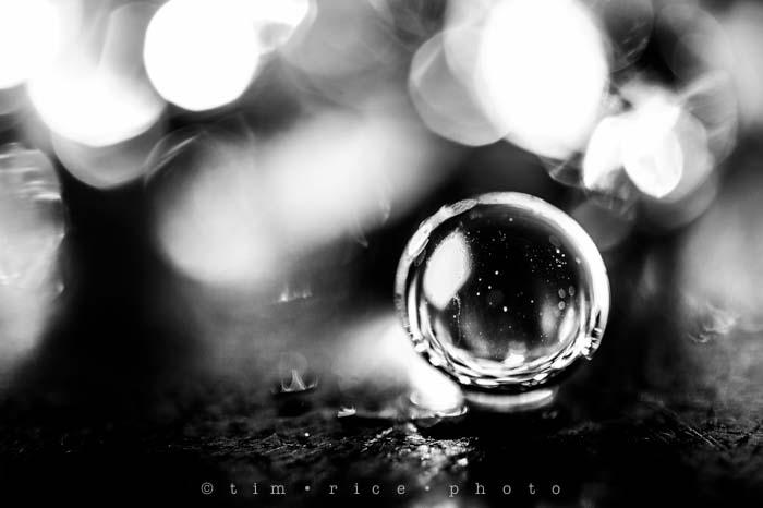 Yr6•087-365•1913•Orbs and Lights