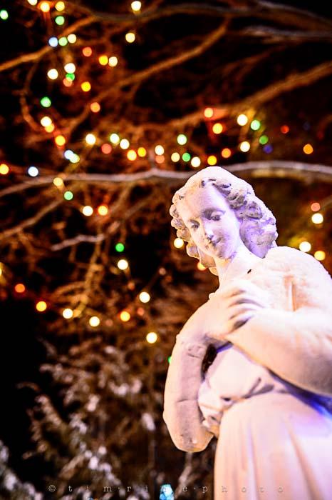 Yr6•092-365•1908•La Salettes Christmas Tree