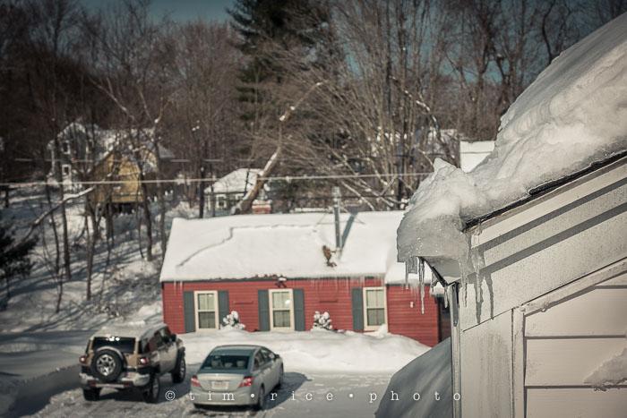 Yr6•126-365•1952•Snow Rise