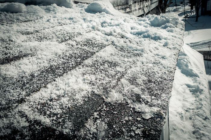 Yr6•128-365•1952•Snow Rise