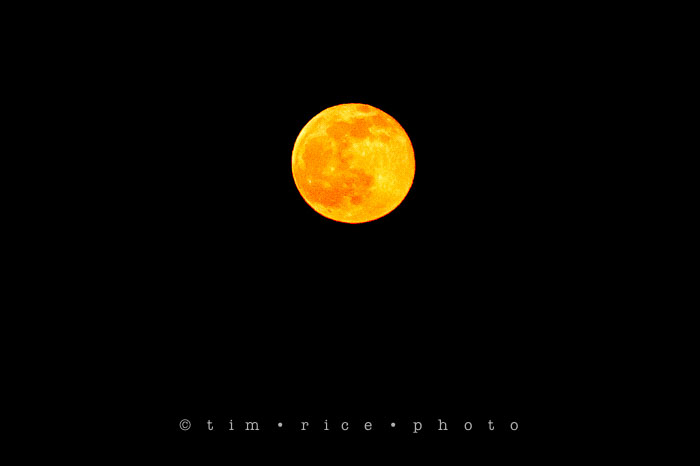 Yr6•217/365•2043 The Orange Moon May 5, 2015