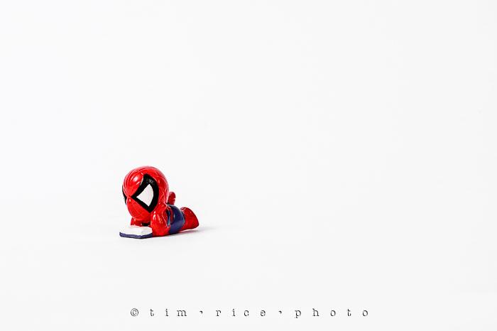 Yr6•263-365•2080•Spider-men