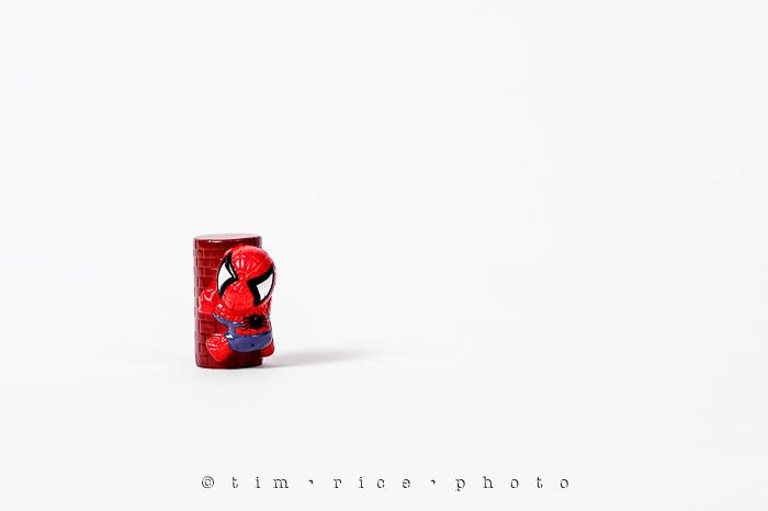 Yr6•268-365•2080•Spider-men