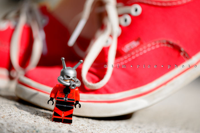 Yr6•290/365•2116 Watch Out for The Ant-man July 17, 2015