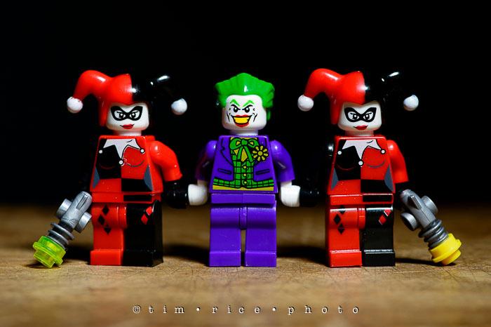 Yr6•309/365•2135 Harley, Joker, Harley August 5, 2015