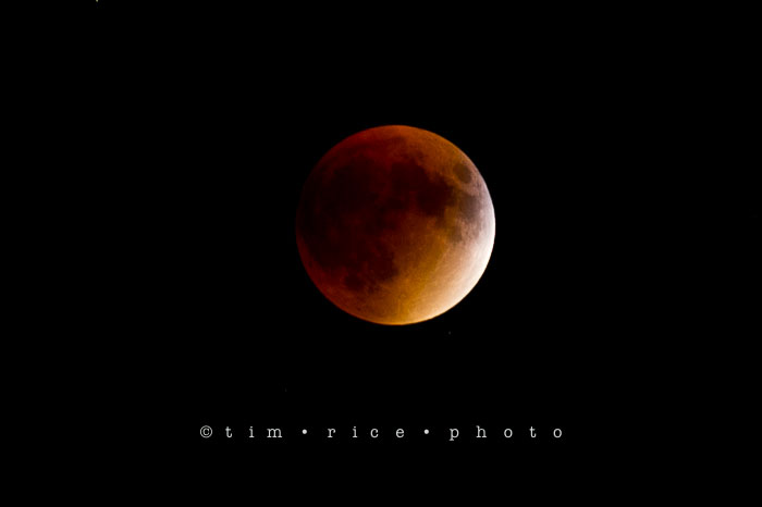 Yr6•373-365•2189•The Blood Moon Eclipse