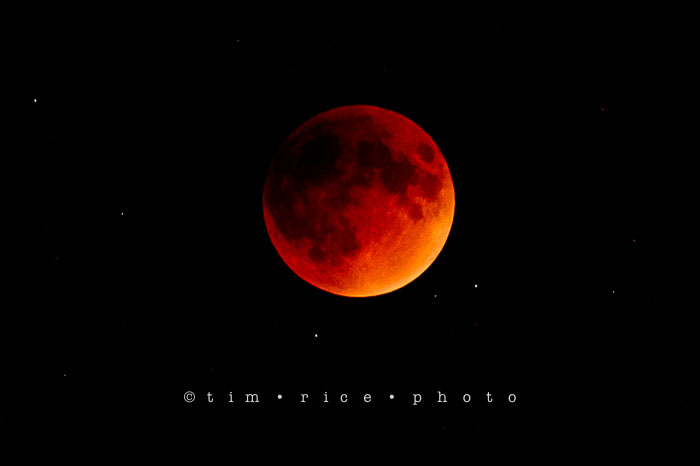 Yr6•374-365•2189•The Blood Moon Eclipse