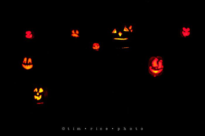 Yr7•015-365•2204•Jack O'Lantern Spectacular