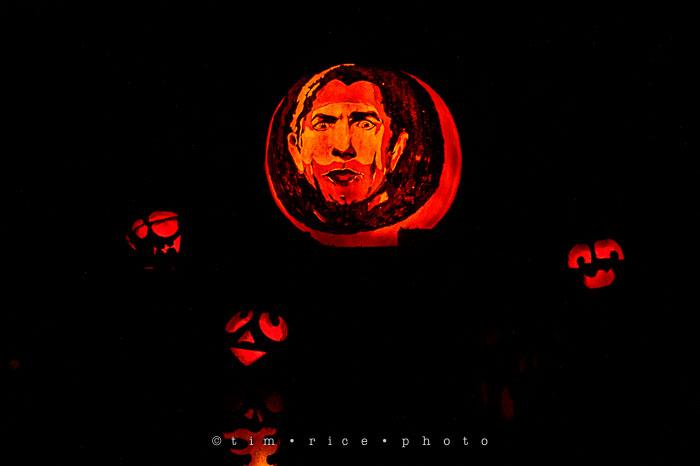 Yr7•017-365•2204•Jack O'Lantern Spectacular