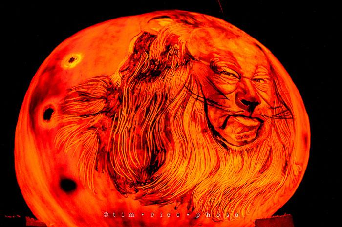 Yr7•024-365•2204•Jack O'Lantern Spectacular